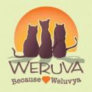 weruva_bug
